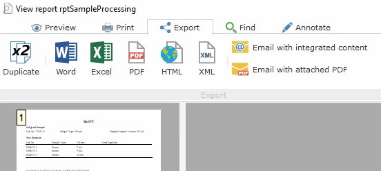 Export to PDF from Print Preview RerunsReport
